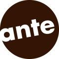 ante-holz GmbH
